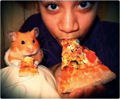 hatewizard:  bluesey:  Me and Percy eating some Papa Johns pizza. Big slice for me, and mini slice for the lil one. Lol  This is the cutest thing i think i've ever seen