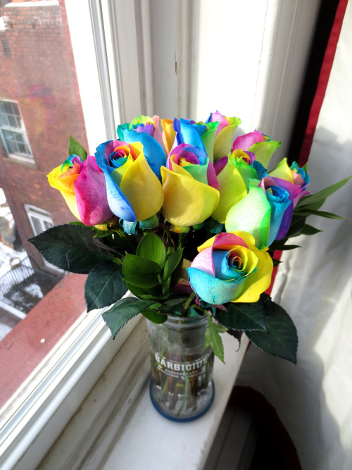 Eric sent me RAINBOW ROSES to celebrate me finishing my book!!! He is the best boyfriend in the world. Basically over the past 3 months I've been ink washing/painting my graphic novel We Can Fix It. If all goes as planned it will be published by Topshelf in May! You can read more about it here: http://www.topshelfcomix.com/catalog/we-can-fix-it/720 Samples pages to come! Man, why would anyone ever want regular roses when they could have rainbow ones??? I want to bury my face in them forever.