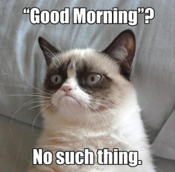 Mindfulness: the cure for the common grumpy cat  Often times we allow ourselves to succumb to the feelings of woe and sadness that haunt our hearts from experiences that we've had in the past. We wake each day in the same grumpy slump.  Constantly re-hashing the past over and over leaves the mind in a state of confusion. Many of us spend a lot of time suffering and thinking of how we wish we could change things that have occurred in our past, aching for the for the present to be much different than it is today. We waste our lives away worrying about what will happen in the future or why things in the past happened to us.  Happiness is available in the present moment if you allow yourself to be at peace with what has happened in your life and relinquish worrying about the future.  When you practice mindfulness (Mindfulness is a state of active, open attention on the present. When you're mindful, you observe your thoughts and feelings from a distance, without judging them good or bad. Instead of letting your life pass you by, mindfulness means living in the moment and awakening to experience). Learning to be mindful of one's thoughts and actions is an imperative step in losing that grumpy face.  Be thankful every day that you wake up and do your best to be a positive person.