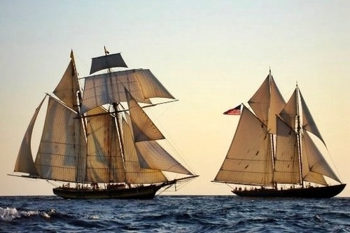 fytallships:  Pride II and Virginia, sailing under everything.  Though, Virginia did set her awning as a sail during this year's Great Chesapeake Bay Schooner Race and she doesn't have that up here.  If this doesn't make you want to sail, we can't be friends.