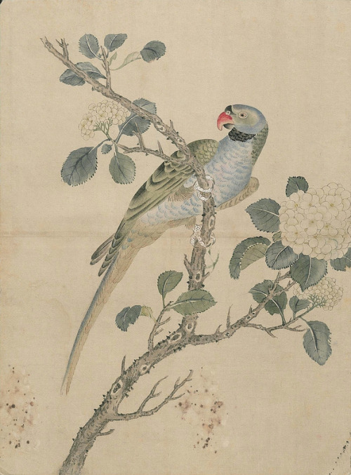 virtuouspagans:  Ink and watercolour, 19th century Japan