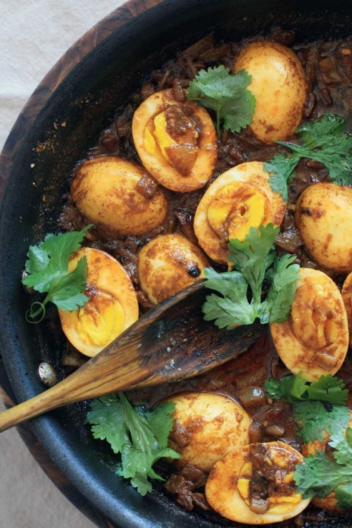 robot-heart:  (via Indian Onion and Yogurt Egg Curry | Girl Cooks World)