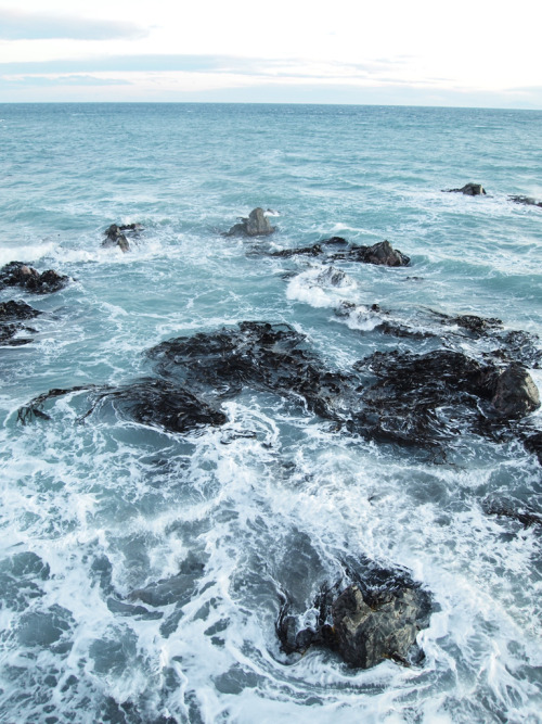 vacants:  Kelp Foam (by Ure.Eljay)