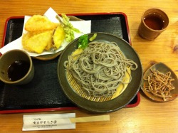 Today is Saturday and it's open school. For lunch, I went to a soba restaurant that a student recommended. Prefer my soba just a tad softer (was too al dente/undercooked) and with more tsuyu dipping sauce. They mathematically measure the exact amount. There wasn't a drop more. The side was deep-fried soba noodles with a light dusting of powder sugar.