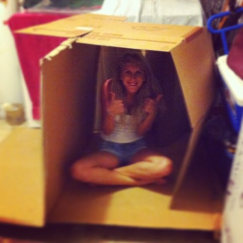 i made a fort guys. i swear, i'm an adult #fort #cardboard #adult
