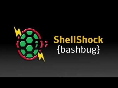 Bash shell scripting