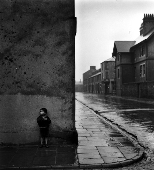 Bert Hardy Down the Bay, 1950 Also