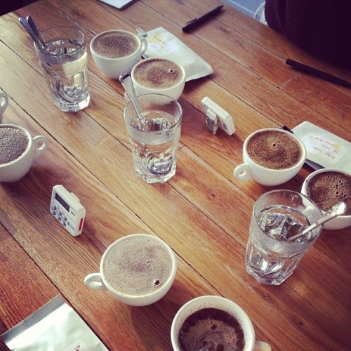 after hours r&d : cupping @49th El Salvador micro-lot samples