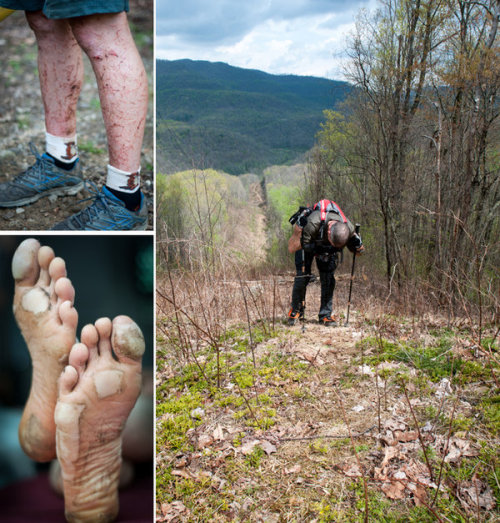"runningobsession:   Meet the Barkley Marathons, the world's toughest and most secretive trail race.   It is a 100-mile footrace that some say is actually 130 miles or more, through unmarked trails that have names like Meth Lab Hill, Bad Thing and Leonard's Buttslide and that are choked with prickly saw briers. Temperatures often range from freezing to blistering on the same day, and there is a cumulative elevation gain of more than 60,000 feet, or the equivalent of climbing Mount Everest twice from sea level.   A 60-hour time limit forces competitors to run, climb and bushwhack for three days with little or no sleep. They endure taunts from the race director, who deliberately keeps the competition's entry procedure a mystery. It is a race in which there are no comfort stations, and runners cannot use a GPS device or a cellphone.   Less than 2 percent of the nearly 800 ultrarunners who have subjected themselves to this punishment — 12 men, the same number as have walked on the moon — have finished the race in its current iteration. The only prize is that after 100 miles, they get to stop.   Wowza. (via Few Know How to Enter; Fewer Finish - NY Times)  is it weird that my first thought was ""I wanna do it!""?"