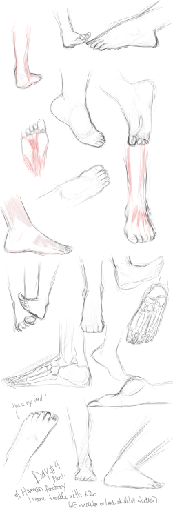 Feet study. Improvement Hell day #4.  ( for bigger size just a click on the feet ! )