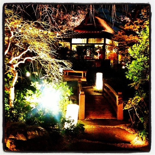 🗼❤🇯🇵 #Tokyo Dreams: Dinner in a #Magic Garden Near #TokyoTower ~ #travel #Japan #latergram (at 東京芝 とうふ屋うかい (Tokyo Shiba Toufuya-Ukai))
