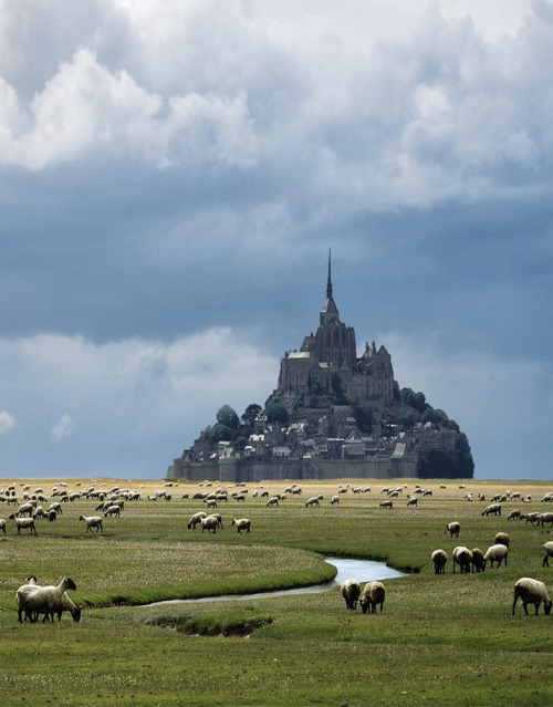 perfectcromulence:  happy-hummingbird:  Mont Saint-Michel in Normandy, France (via Danny Vangenechten).  Damn.