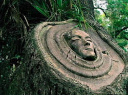 sonessa:  Tree Spirits.  Keith Jennings has been carving tree spirits since 1982.
