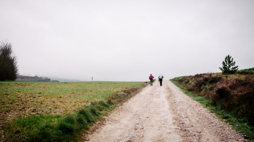 Carry on, pilgrim. Camino de Santiago.