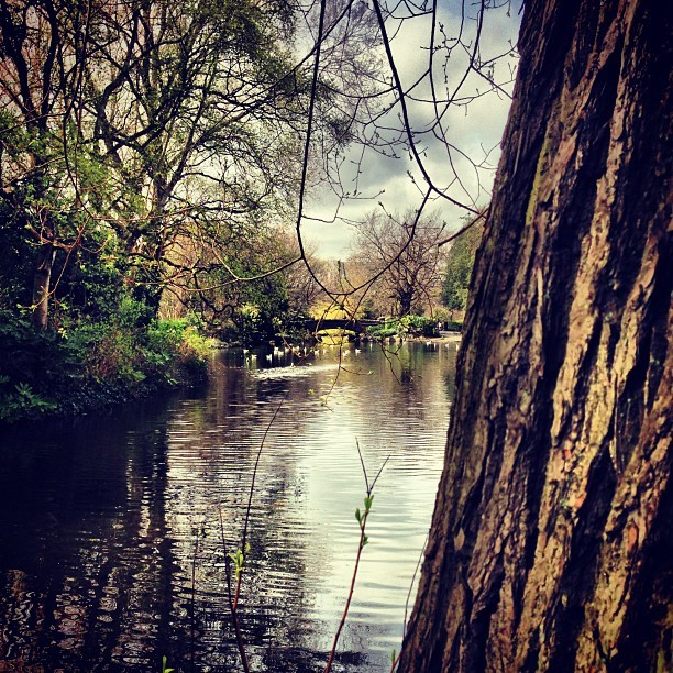 Yesterday's lunch time stroll #latergram  (at St Stephen's Green)