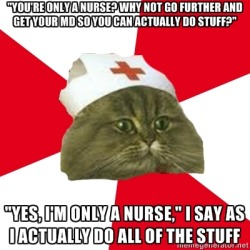nursingstudentcat:  whenever I get asked this I want to smack people