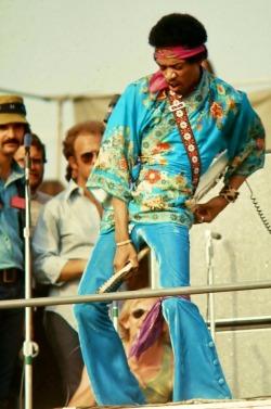 live jimi hendrix 1969 The Jimi Hendrix Experience