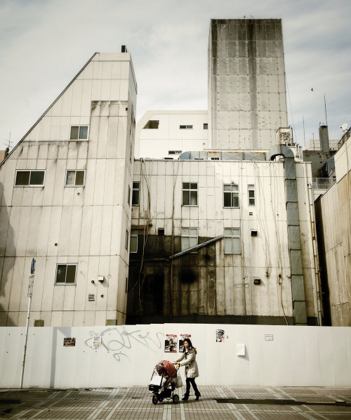 lensblr-network:  Urban Jungle by disintangible.tumblr.com