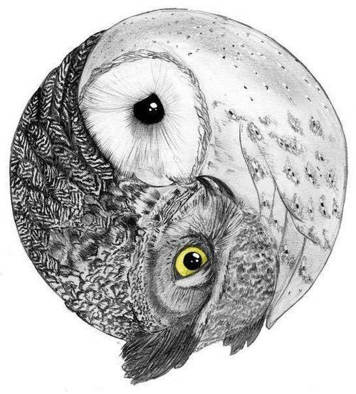 fucking love this, think i finally found my owl tattoo!!! <3 <3 <3