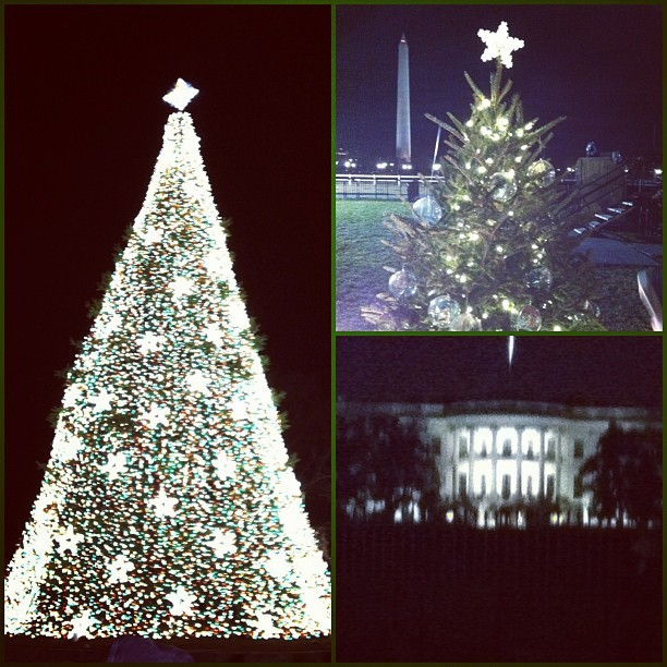 Lived in this city my entire life, first time viewing the tree 🎄Happy Holidays