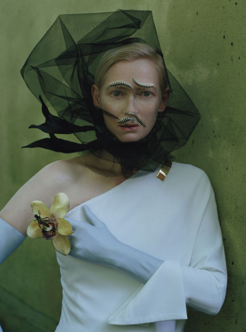 deathofastylist:     Tilda Swinton in Stranger Than Paradise ph by Tim Walker for W Magazine May 2013