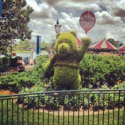 #disney #waltdisneyworld #epcot #flowerandgarden #winniethepooh #pooh