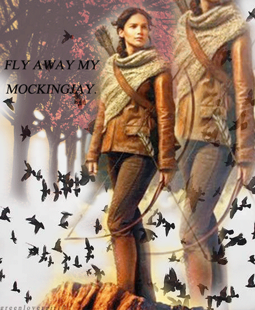 greenlovergirl:  Fly Away, My Mockingjay.