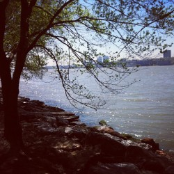 Staycation? (at Riverside Park Bike Path)