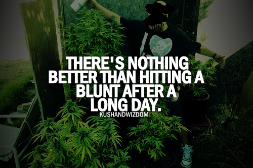 weedyindeedy:  #truuu