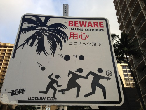 Those coconuts are out for attack!