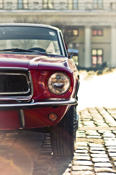 automotivated:  Ford Mustang (by pskrzypczynski)