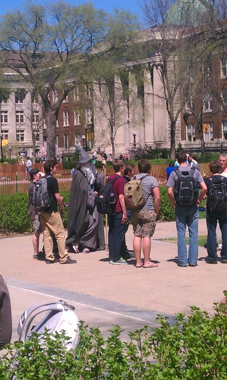 "iceyfrog:  University of Minnesota: Where a student dresses like Gandalf on the last day of class and goes around to class rooms shouting ""YOU SHALL PASS!"""