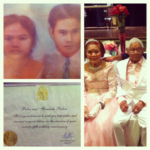 Mang and Pang's 75th wedding anniversary, complete with a congratulatory certificate from Stephen Harper.