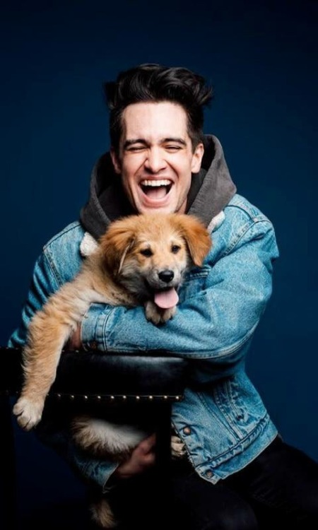 brendonurielectric brendon patd p!atd brendon urie beebo urie beebo dog magazine photoshoot blue lockscreen wallpaper art panic! at the disco panic at the disco emo music doab