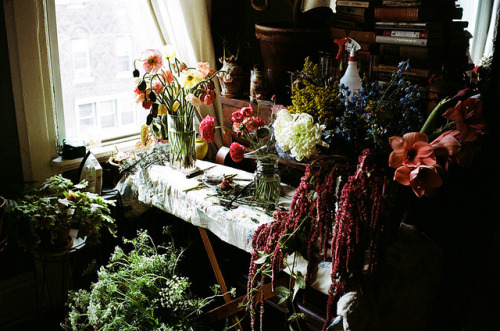 Kinfolk Flowers shot by Parker Fitzgerald by Amy Merrick on Flickr.