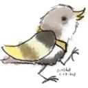 scribblebirds
