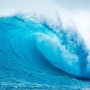 wavecelebritygist