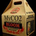 myco2-mushroomkit