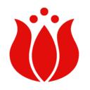 butikhawaii
