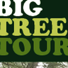BIG TREE TOUR BLOG