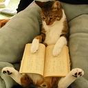 books-gorodishche