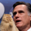 Cats on Mitt Romney