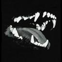 wolf0522