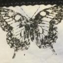 hostilebutterfly