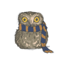 a-lovely-little-owl