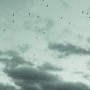 glasskaar-blog
