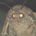 somanylampsbrother