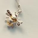 silverchainbee