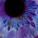 violettints