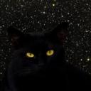 starlightcat